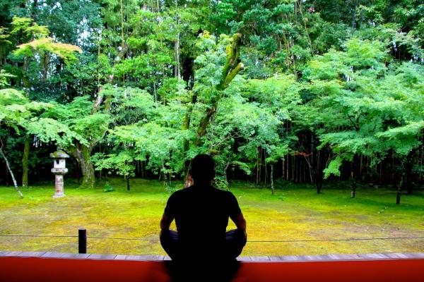 Mes dix stations - Japon 2013