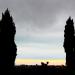 Si près - Sicile 2013