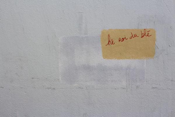 Interpellant - Marseille 2013