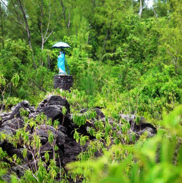 La Vierge parasol - La Réunion 2012