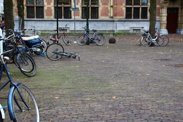 Le vent du Nord - La Haye 2014
